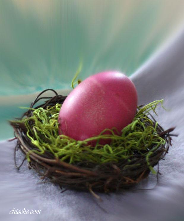 eid-egg-010-chioche