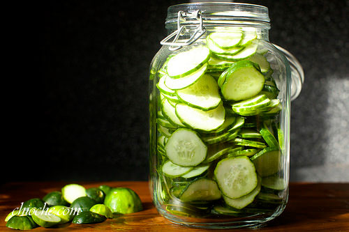 dill-pickled-3