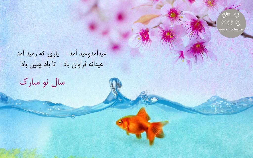 Eid-Mubarak-95_chioche
