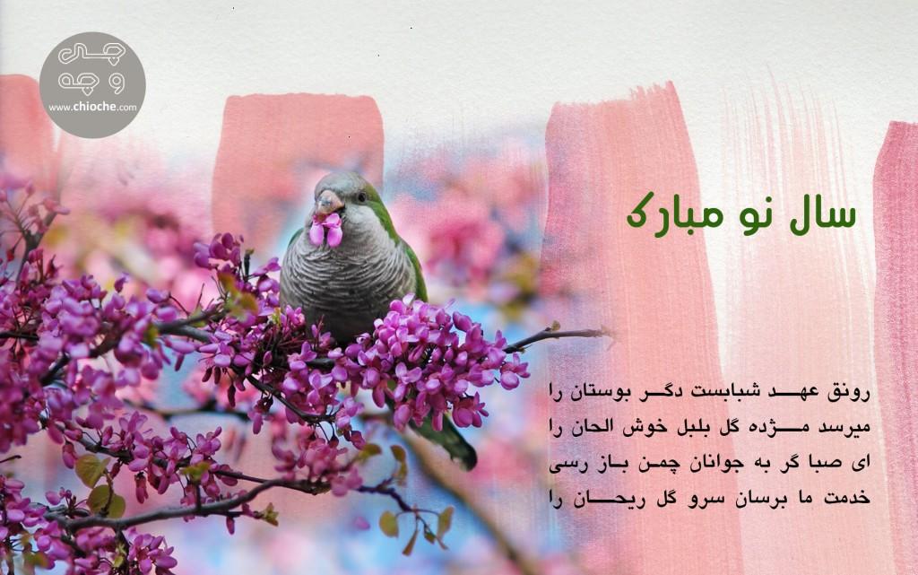 Eid-Mubarak_95_chioche