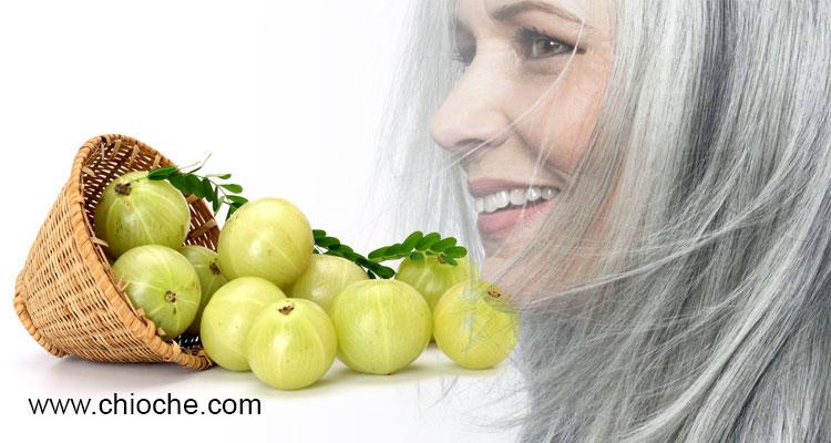 درمان رفع سفیدی موی سر با املا